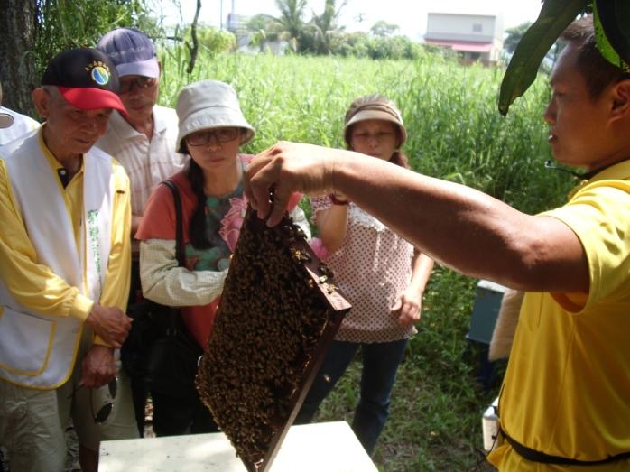 養蜂參訪活動-小蜜蜂的家